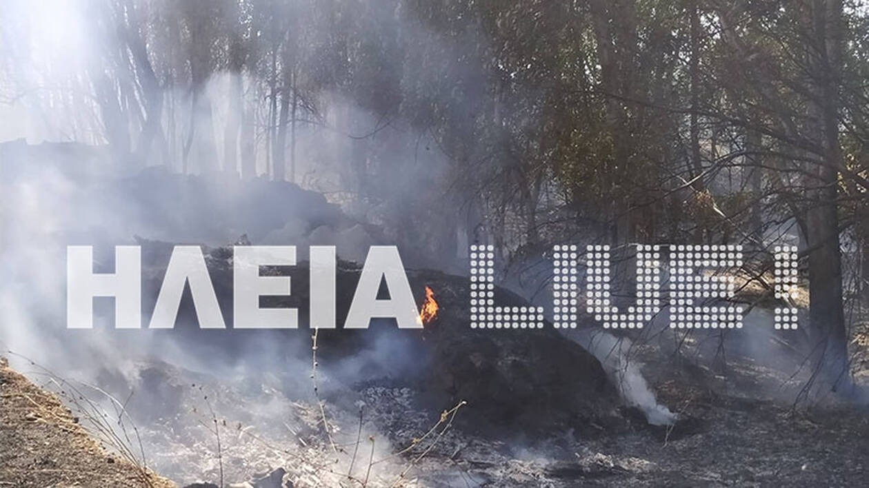 Manolada_fire3.jpg