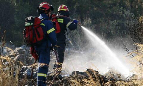 Φωτιά ΤΩΡΑ σε Ηλεία και Αρκαδία