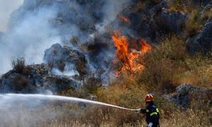 Υπό έλεγχο η πυρκαγιά στην Αρκαδία
