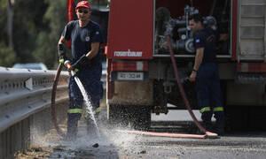 Ηλεία: Υπό έλεγχο η πυρκαγιά στη Νέα Μανωλάδα