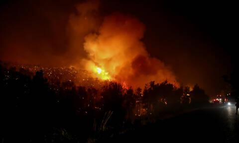 Φωτιά στον Διόνυσο - Συναγερμός στην Πυροσβεστική (pics&vid)