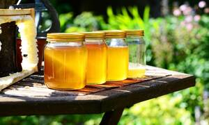 ΗΠΑ: Παρέμεινε υπό κράτηση 82 ημέρες επειδή έφερε... μέλι στη χώρα!