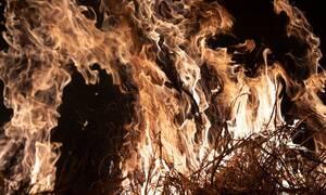 Αμαζόνιος: «Βαριανασαίνει» ο πλανήτης - Φλέγεται ο «πνεύμονας» της Γης - Κινητοποίηση του Στρατού