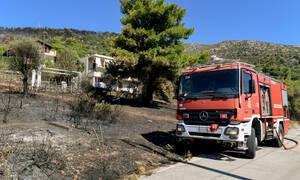Φωτιά ΤΩΡΑ: Μεγάλη πυρκαγιά στη Μεσσηνία