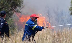 Φωτιά ΤΩΡΑ: Μεγάλη πυρκαγιά στον Ασπρόπυργο - Τεράστια κινητοποίηση της Πυροσβεστικής