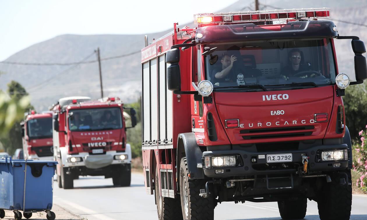 Φωτιά ΤΩΡΑ: Μεγάλη πυρκαγιά στην Αχαΐα