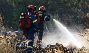 Φωτιά ΤΩΡΑ: Μεγάλη πυρκαγιά και στη Σαλαμίνα