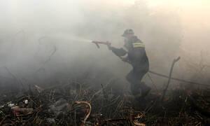 Φωτιά ΤΩΡΑ στη Σάμο: Νέο μέτωπο για την πυροσβέστικη