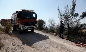 Πολύ υψηλός κίνδυνος πυρκαγιάς για τρεις περιφέρειες την Κυριακή - Δείτε πού