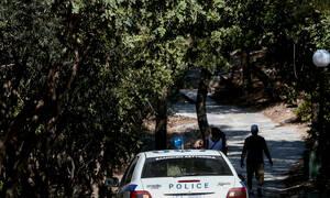 Τούρκοι αναρχικοί σε κάμπινγκ στην Εύβοια – Περίεργο περιστατικό