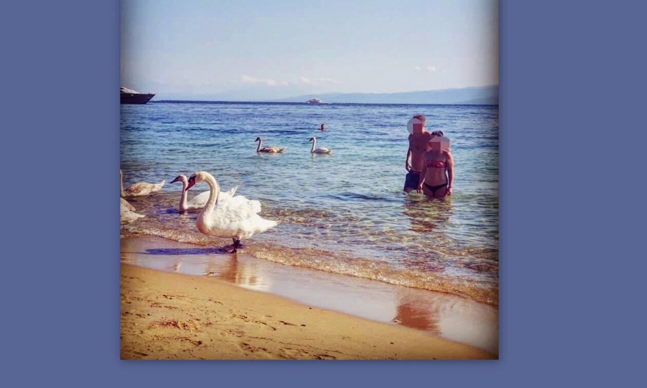 Ελληνίδα ηθοποιός κολυμπά ανάμεσα σε κύκνους- Δείτε την πρώτη φορά με μαγιό και χωρίς ρετούς!