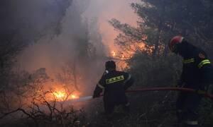 Φωτιά: Oλονύχτια μάχη της πυροσβεστικής σε Σάμο και Κύθηρα - Πού υπάρχουν ενεργά μέτωπα