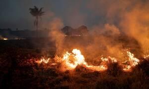 Βραζιλία: Εκατοντάδες νέες φωτιές στην Αμαζονία – Μεγαλώνει η αγωνία