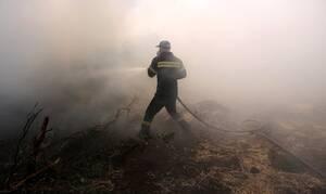 Φωτιά ΤΩΡΑ: Ενισχύθηκαν οι πυροσβεστικές δυνάμεις στα Κύθηρα