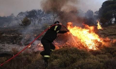 Φωτιά τώρα: Πύρινη κόλαση σε Σάμο, Κύθηρα και Φλώρινα - Ολονύχτια μάχη με τις φλόγες