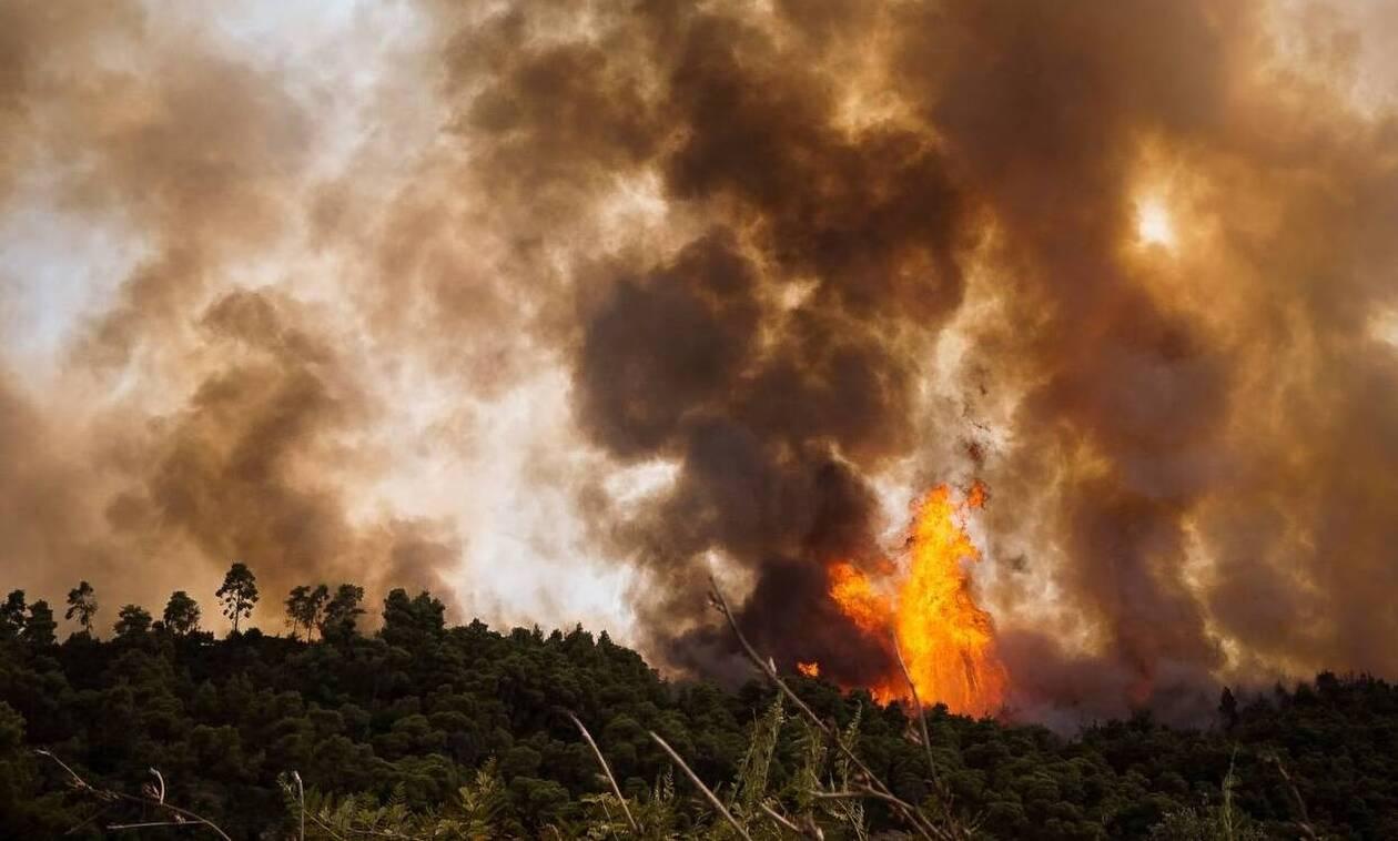 Πυρκαγιές στην Πελοπόννησο: Αυτοί είναι οι εμπρηστές που συνελήφθησαν – Οδηγούνται στον εισαγγελέα