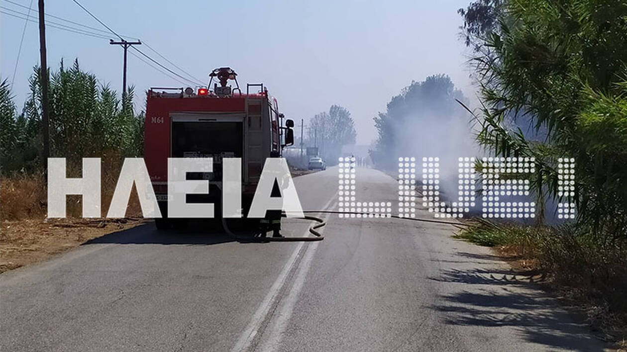 Manolada_fire2.jpg