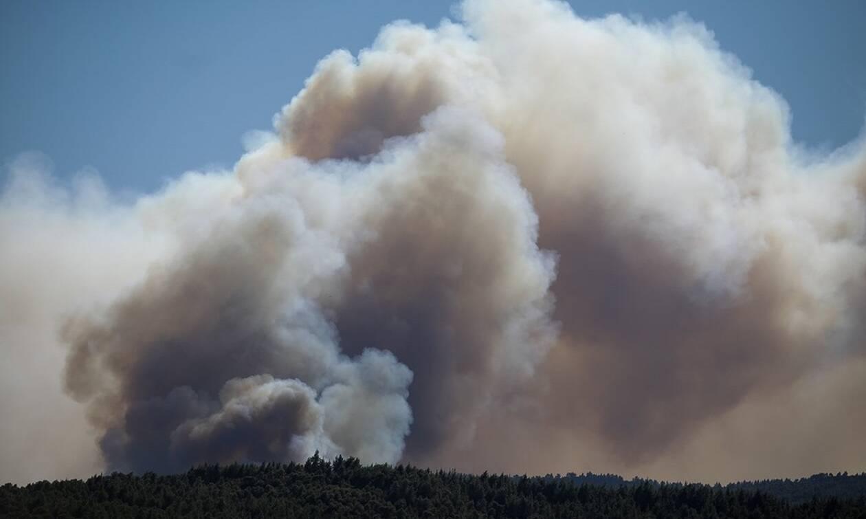 Φωτιά ΤΩΡΑ: Σε δύσβατο σημείο η πυρκαγιά στα Καλάβρυτα – Μάχη με τις φλόγες (pics)