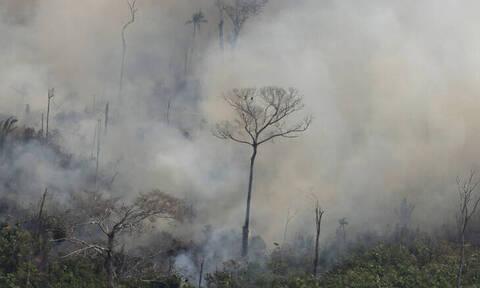 Ο Αμαζόνιος καίγεται: Τι ακριβώς συμβαίνει και γιατί επηρεάζει ολόκληρο τον πλανήτη