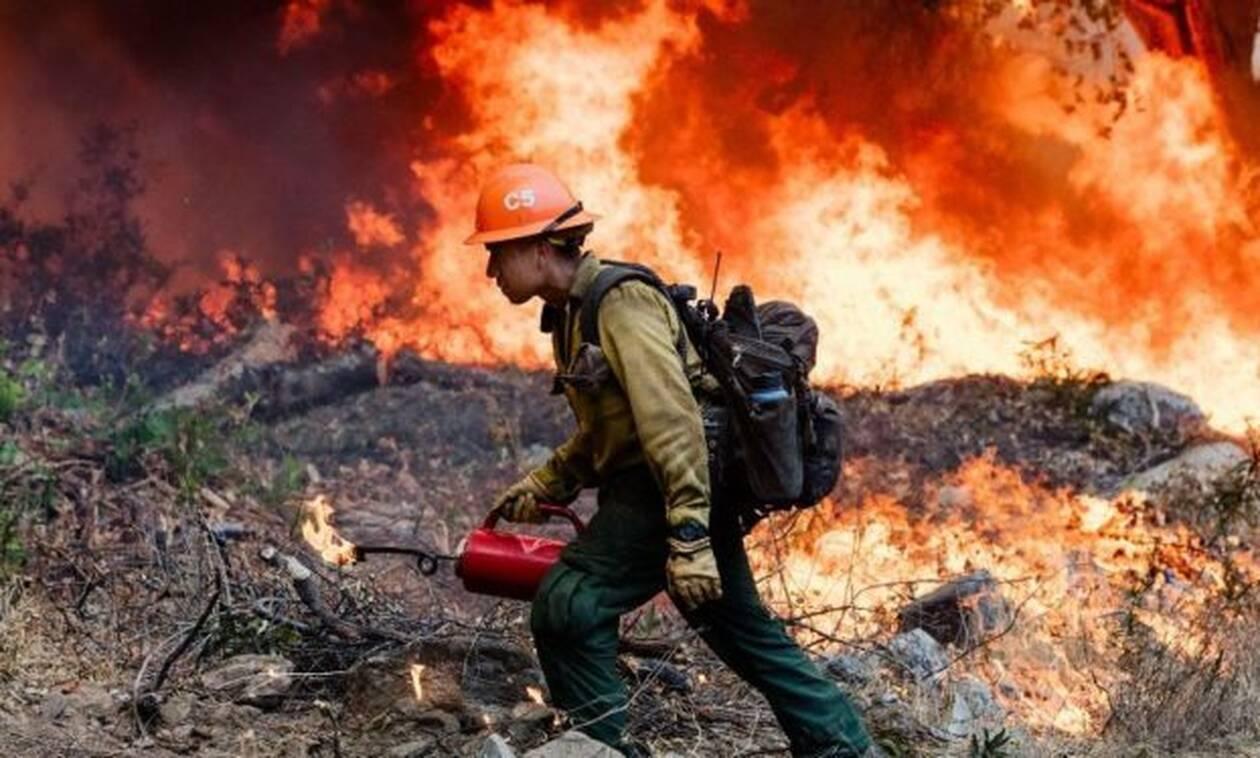 Αμαζόνιος: Αυτοί είναι οι λόγοι που οι πυρκαγιές δε σβήνουν με τίποτα!