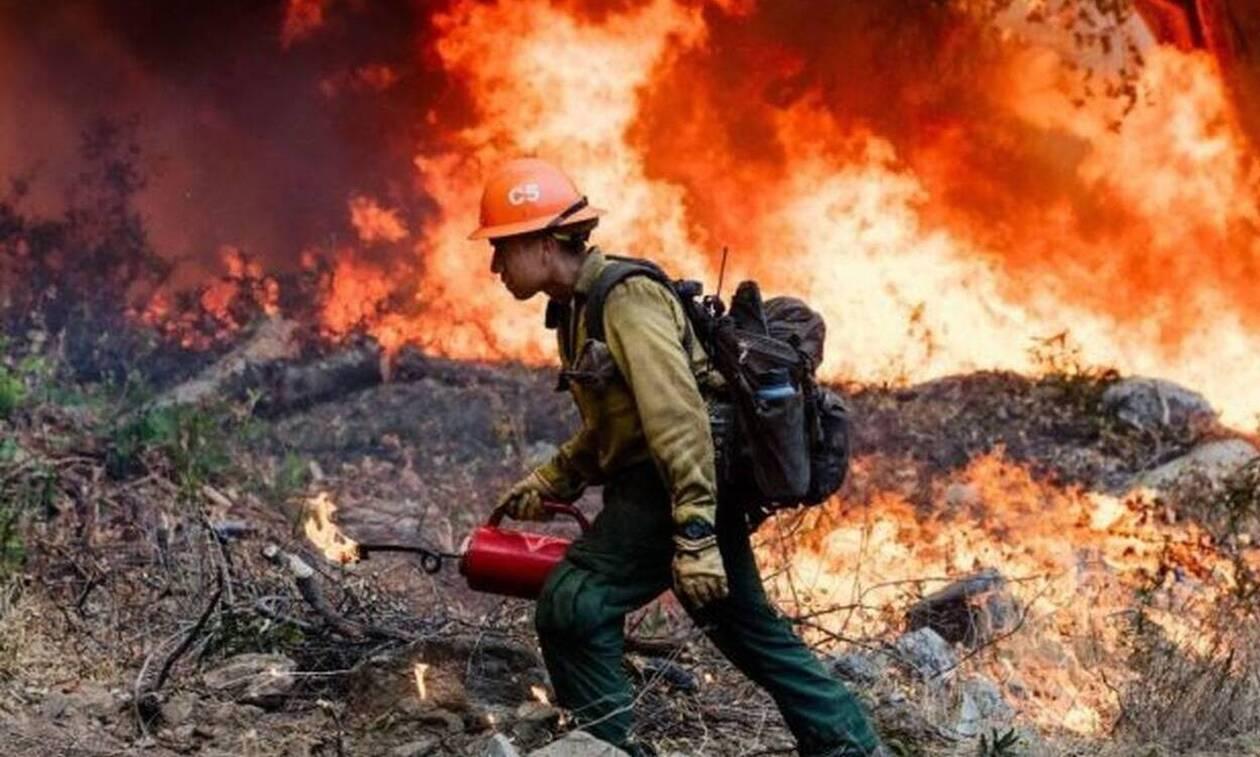 Τρία μέτωπα φωτιάς σε Καλάβρυτα, Βοιωτία και Πρέβεζα