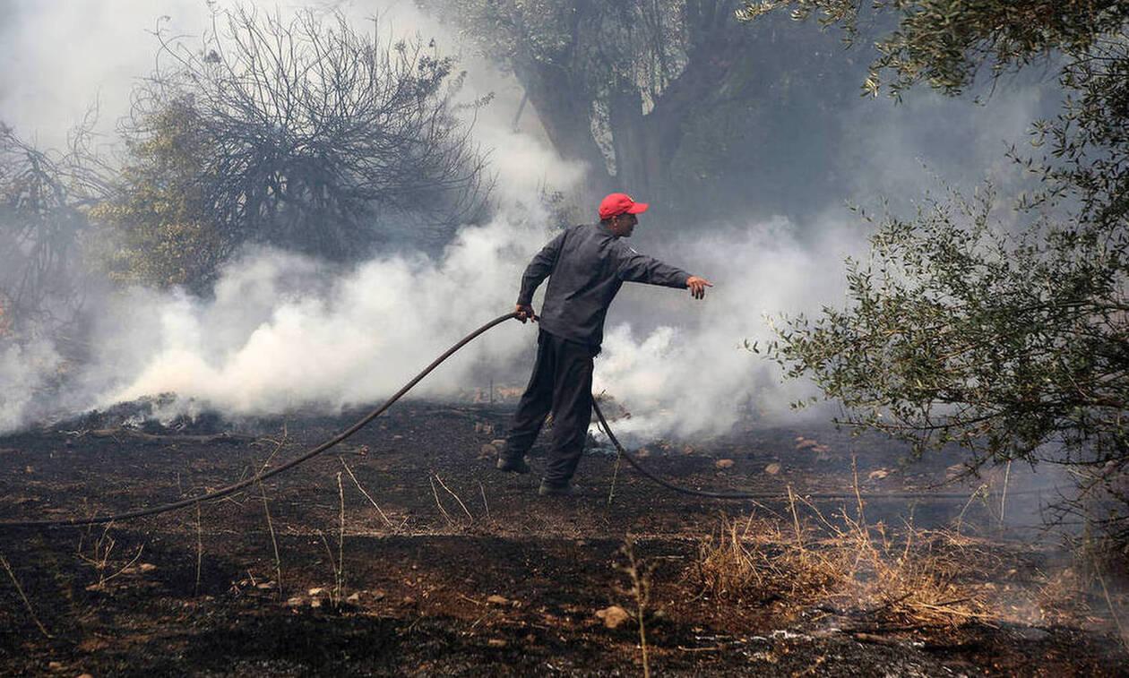 Ομολογία ΣΟΚ του εμπρηστή για τις φωτιές στην Ηλεία