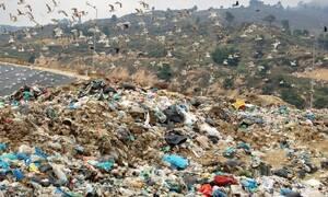 Кипр занял второе место «мусорного» рейтинга Eurostat