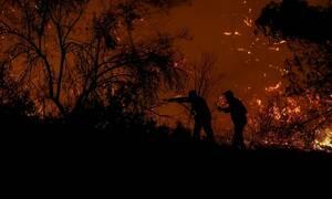 Φωτιά ΤΩΡΑ στο Πεταλίδι Μεσσηνίας