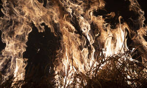 Αμαζόνιος: Οι «πνεύμονες» της Γης «φλέγονται» - 1.113 νέες εστίες φωτιάς σε μία ημέρα (pics&vids)