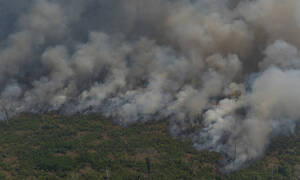 Amazon fires: Brazil to reject G7 offer of $22m aid