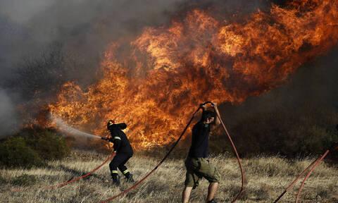 Φωτιά ΤΩΡΑ στην Θεσπρωτία