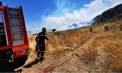 Φωτιά ΤΩΡΑ: Πυρκαγιές σε Θεσπρωτία, Κέρκυρα, Καβάλα και Θεσσαλονίκη
