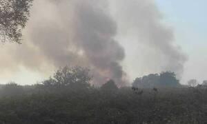 Κέρκυρα: Τέθηκε υπό έλεγχο η πυρκαγιά