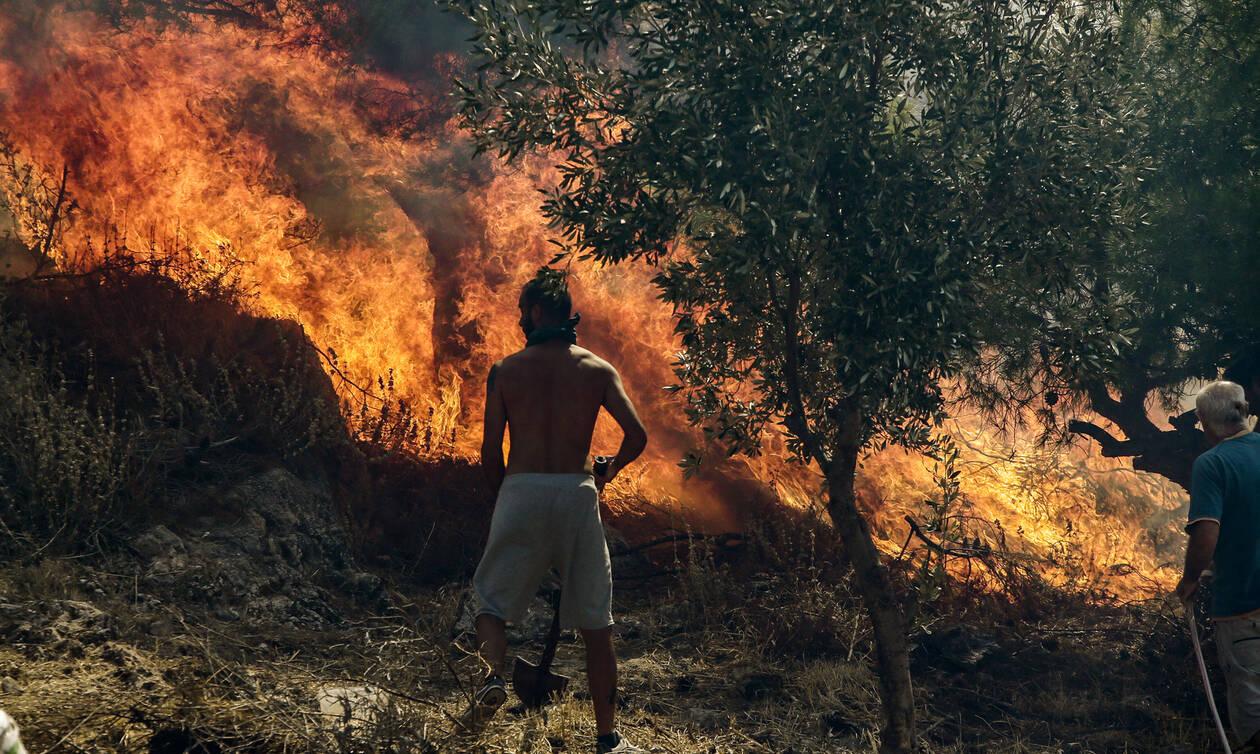 Φωτιά ΤΩΡΑ στην Αρτέμιδα