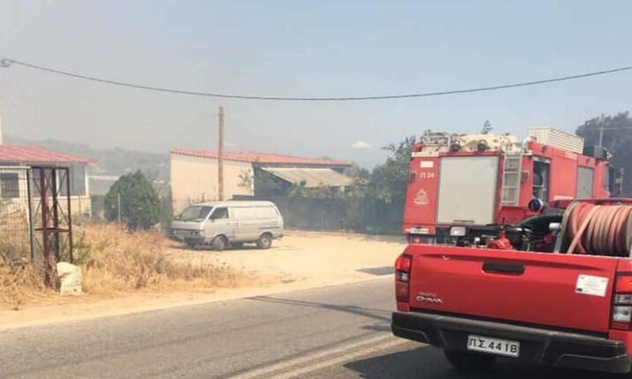 Φωτιά στην Αρτέμιδα: Διακοπή κυκλοφορίας στη λεωφόρο Κιάφας