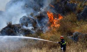 Πολύ υψηλός κίνδυνος πυρκαγιάς! Ο χάρτης πρόβλεψης κινδύνου για την Πέμπτη (29/08)