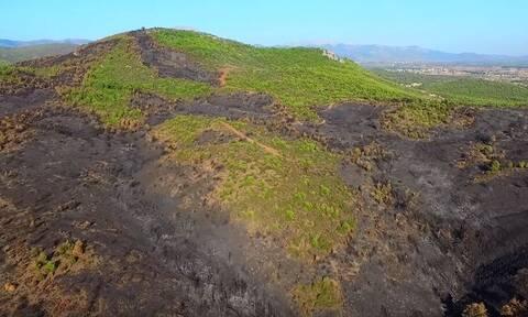 Φωτιά Εύβοια: Το μαύρο... αποτύπωμα από ψηλά