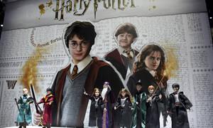 Θλίψη για πρωταγωνίστρια του Harry Potter – Σκοτώθηκε ο αδελφός της
