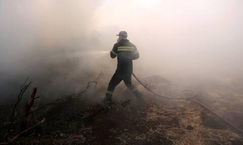 Φωτιά Τώρα: Πυρκαγιά κοντά σε εργοστάσια στη Μεταμόρφωση Αττικής