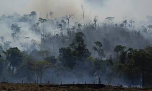 Ο Αμαζόνιος συνεχίζει να φλέγεται: 2.000 νέες εστίες καίνε τον «πνεύμονα του πλανήτη»