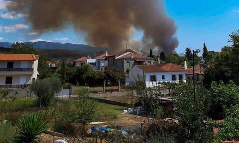 Φωκίδα: Σε ύφεση η μεγάλη φωτιά (pics)