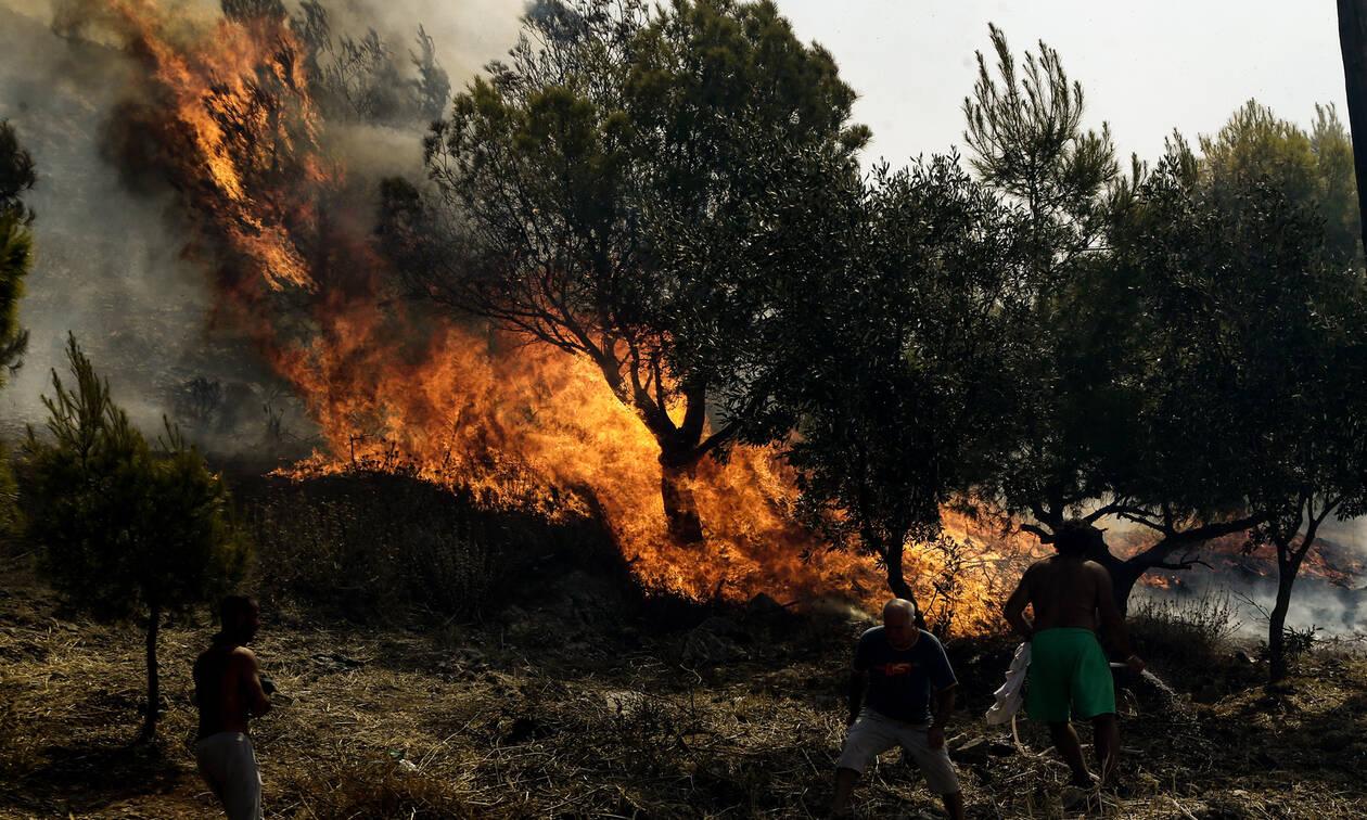 Φωτιά στο Νέο Ικόνιο Περάματος