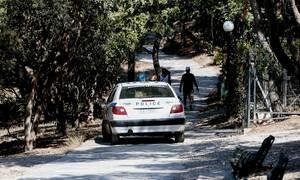 Τρίκαλα: Συνελήφθη 39χρονος για κατοχή αρχαίων και όπλων