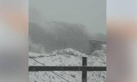 Καιρός: Τα πρώτα χιόνια έπεσαν στις Δολομιτικές Αλπεις (video)
