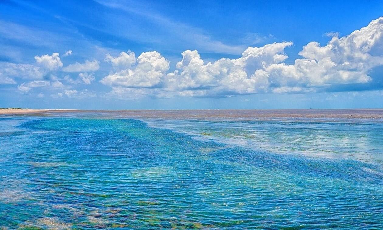Πανικός σε παραλία: Έτρεχαν να σωθούν οι λουόμενοι – Δείτε τι συνέβη (pics)