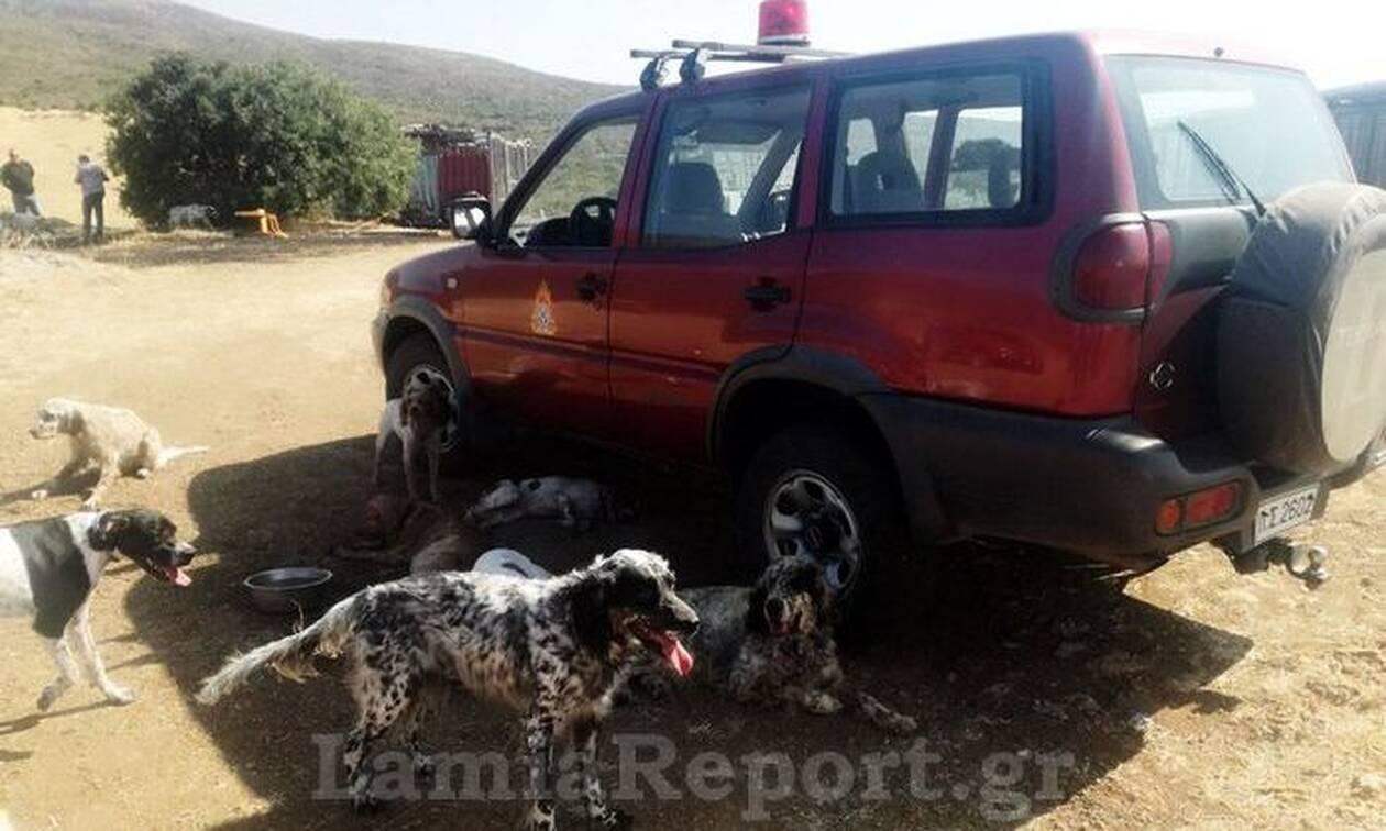 Θήβα: Μεγάλη πυρκαγιά σε κυνοτροφείο - Οι πυροσβέστες έσωσαν τα σκυλιά (pics)