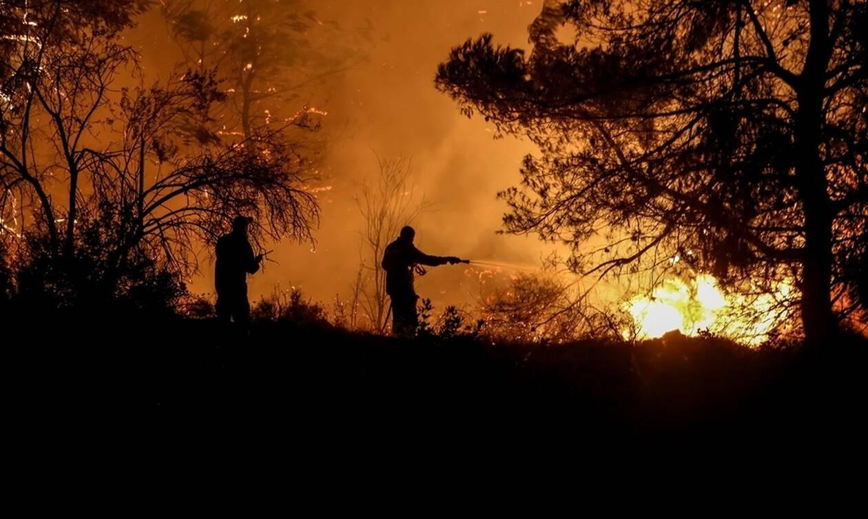 Φωτιά ΤΩΡΑ στη Νέα Μάκρη: Όλα δείχνουν εμπρησμό - Πολύ κοντά το μέτωπο με τα καμένα του Νέου Βουτζά