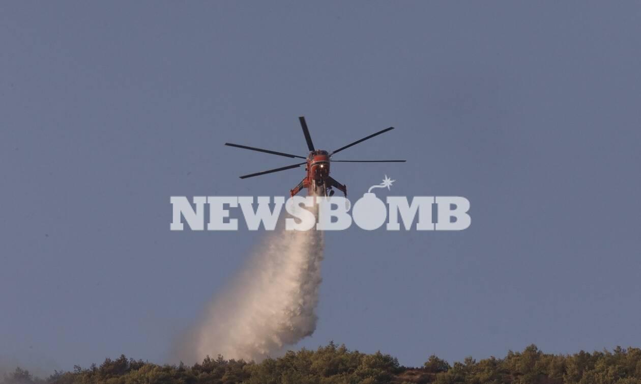 Φωτιά Νέα Μάκρη: Επικεφαλής Πυροσβεστικής - Είναι καθαρά εμπρησμός