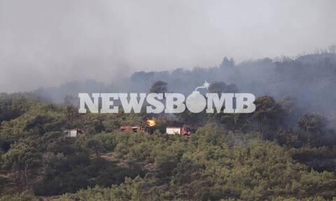 Φωτιά ΤΩΡΑ στη Νέα Μάκρη: Σε ύφεση τα πύρινα μέτωπα - Κίνδυνος αναζωπυρώσεων