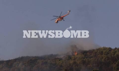 Φωτιά Νέα Μάκρη: Εικόνες από τον πύρινο εφιάλτη – Όσα κατέγραψαν οι ρεπόρτερ του Newsbomb.gr